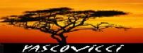 キリマンジャロ登頂記 (12) ンゴロンゴロのクレーターでサファリ_c0011649_23423925.jpg