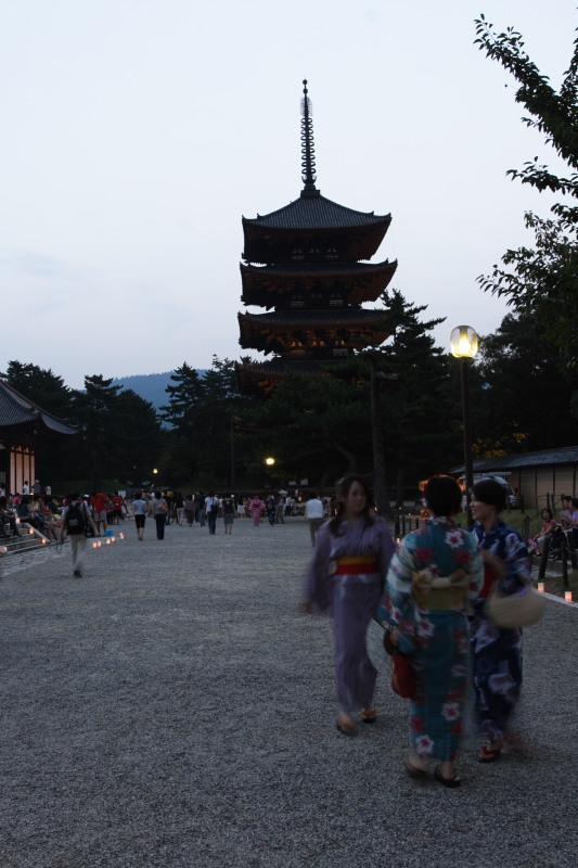 奈良 興福寺 ライトアップ_f0021869_10141874.jpg