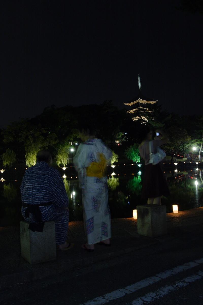 奈良 興福寺 ライトアップ_f0021869_10153860.jpg