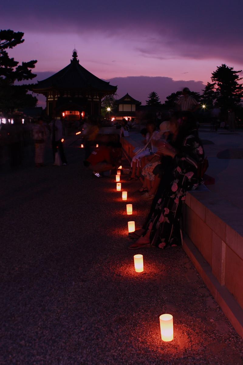 奈良 興福寺 ライトアップ_f0021869_1015621.jpg