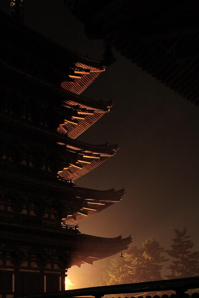 奈良 興福寺 ライトアップ_f0021869_10173939.jpg
