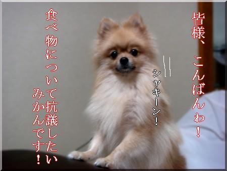 b0078073_23451196.jpg