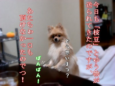 b0078073_2346129.jpg