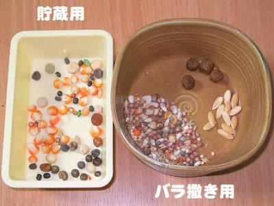 雑穀と貯食