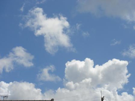 ふるさとの空を見上げて_a0014840_19121072.jpg