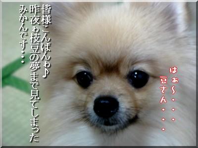 b0078073_224207.jpg