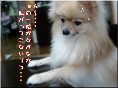 b0078073_22433283.jpg
