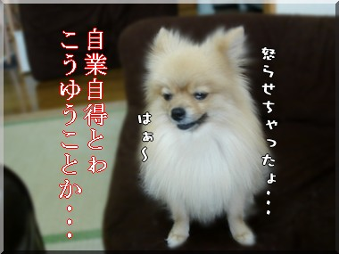 b0078073_2246197.jpg