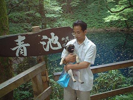 青森県十二湖へ_f0019498_22532123.jpg