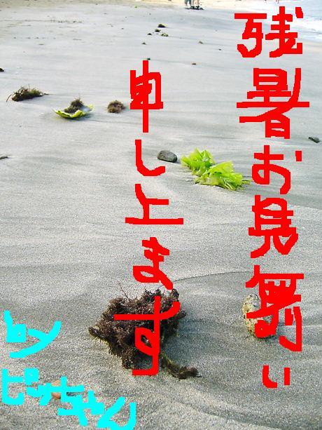 f0079723_11432412.jpg