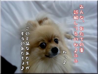 b0078073_22434360.jpg