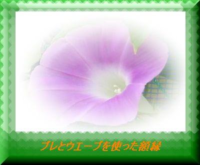 f0060302_1312363.jpg