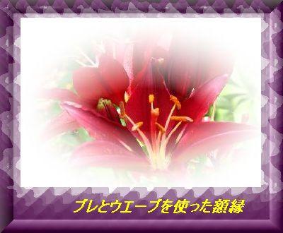f0060302_133011.jpg