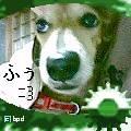 b0108053_08413.jpg