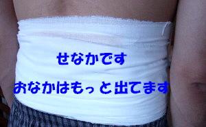 c0044199_17173251.jpg