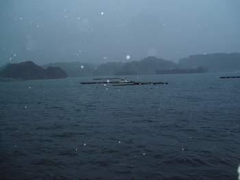 居座る台風10号_a0077071_75515.jpg