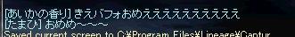 b0078004_655094.jpg