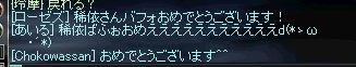b0078004_794843.jpg