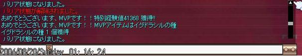 e0082043_2025723.jpg