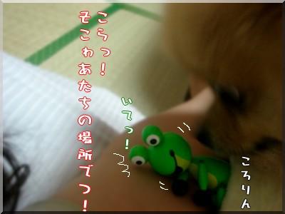 b0078073_2320731.jpg