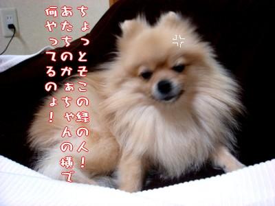 b0078073_23214012.jpg