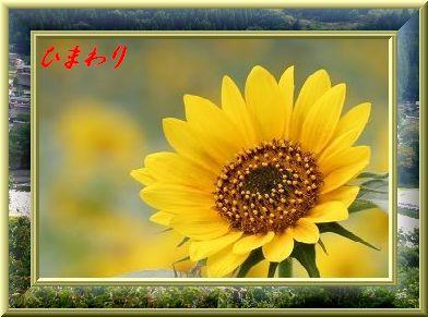 f0060302_15141596.jpg