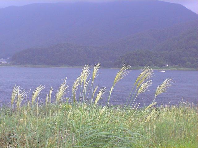 河口湖の夏。_e0060555_2135096.jpg