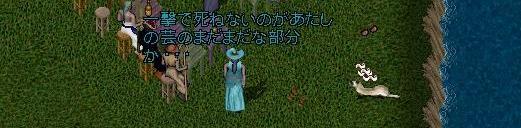 e0068900_6595219.jpg