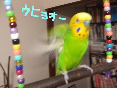 b0082757_14613.jpg