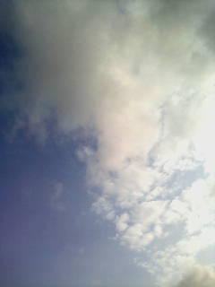 ~暑い~_e0051174_659276.jpg