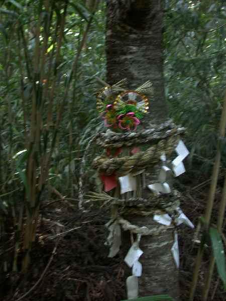 遠野不思議 第二百四十一話「大蛇を祀った熊野神社」_f0075075_20113338.jpg