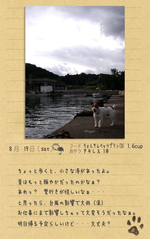 b0040323_14165272.jpg