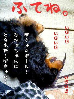 b0048649_1249425.jpg