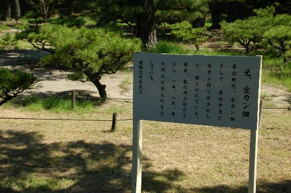 養 翠 園 (ようすいえん)  6_b0093754_0404271.jpg
