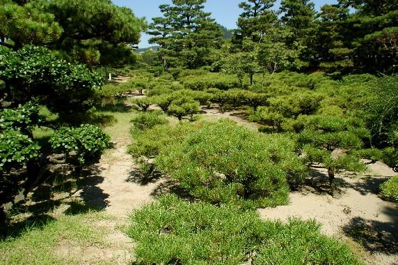 養 翠 園 (ようすいえん)  6_b0093754_0405529.jpg
