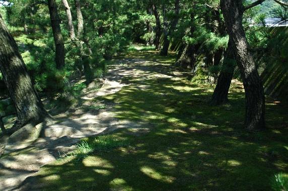 養 翠 園 (ようすいえん)  6_b0093754_041249.jpg