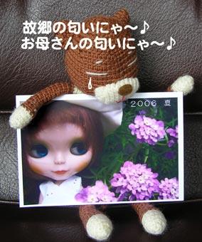 b0059664_13305120.jpg