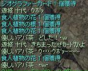 f0107520_603145.jpg