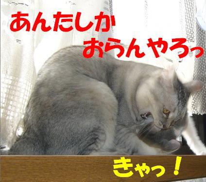 f0002743_2138151.jpg