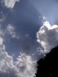夏のオワリ。_d0028589_10255298.jpg