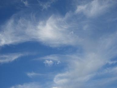 空が気持ちよさそうです。_a0045293_1855158.jpg
