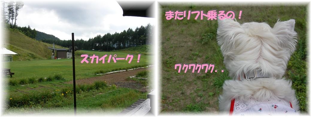 f0039907_010077.jpg