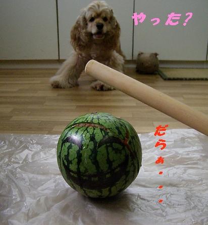 b0067012_3311921.jpg