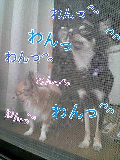 c0076933_19443664.jpg