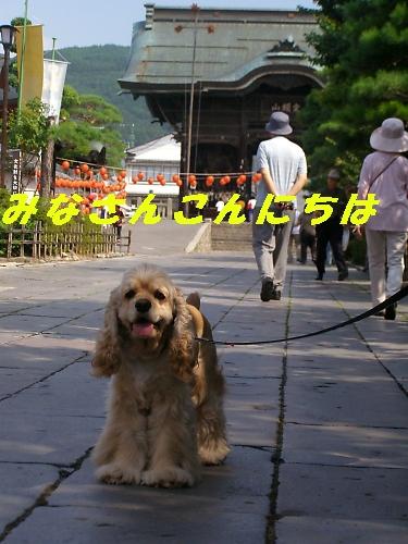 b0067012_0541033.jpg