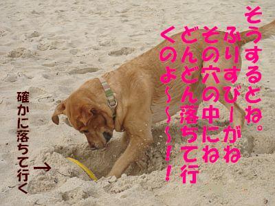 c0087521_1415031.jpg