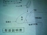 d0048632_17301545.jpg