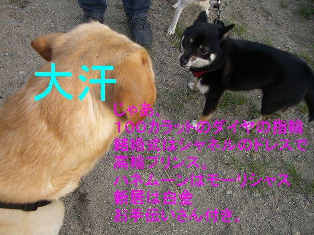 f0053952_12103684.jpg