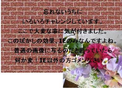 b0078675_1220249.jpg