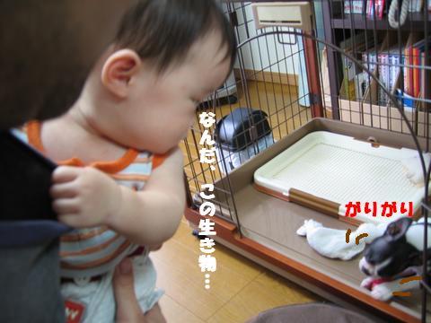 c0092097_20113061.jpg